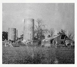 In May of 1934 at the dairy farm of Billy Graham's father, W. Frank Graham, a group of businessmen gathered and prayed for God to raise up an evangelist from Charlotte to spread the Gospel.