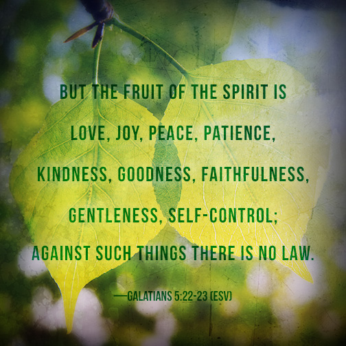 Image Result For What Is The Fruit Of The Spirit And How Do I Grow It Jesus Quotes On Peace
