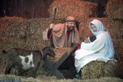 Celebrating Christ's Birth at the Billy Graham Library