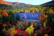 Find Spiritual Refreshment in The Cove's Natural Beauty This Fall and Beyond