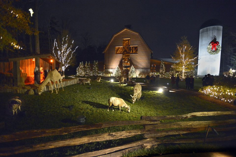 Live nativity with animals in front of the Billy Graham Library