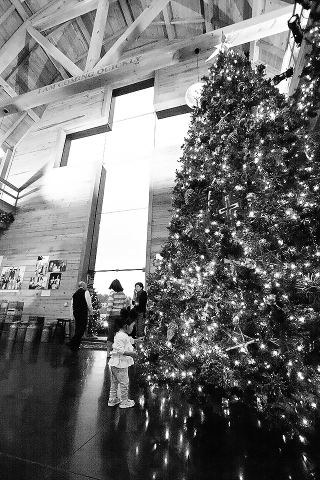 Inside of Billy Graham Library—cross window and large Christmas tree