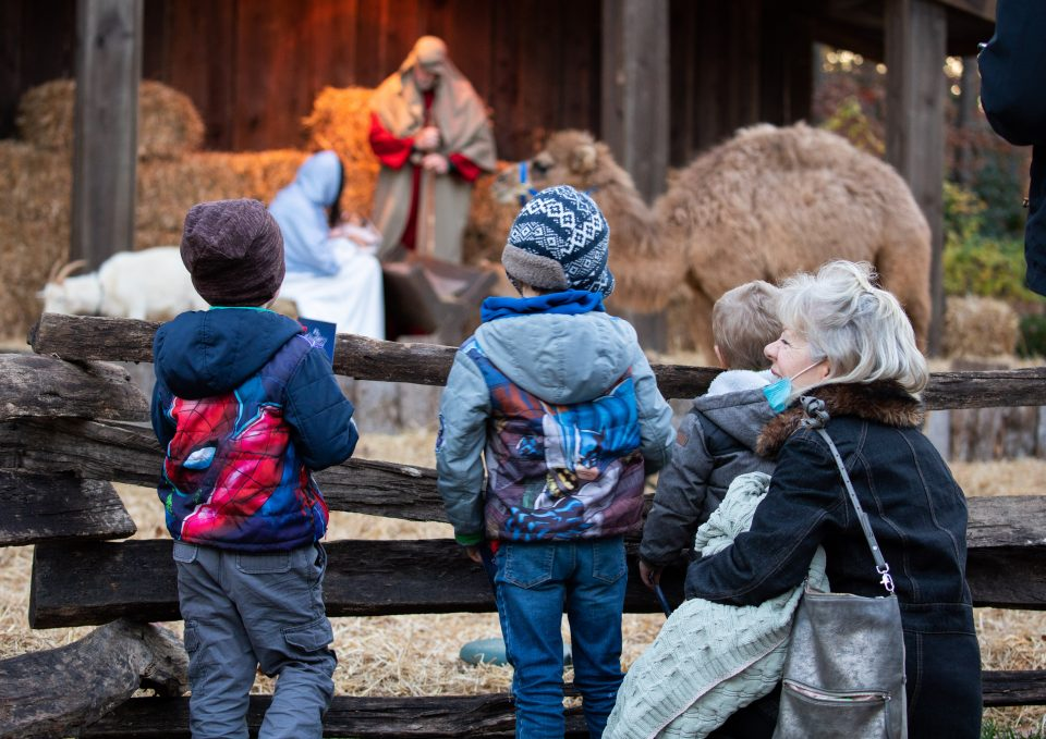 3 young boys and older woman looking at nativity scene