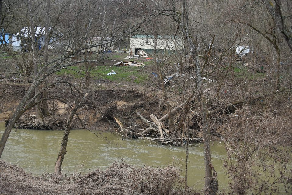 Trees falling into the Kentucky River