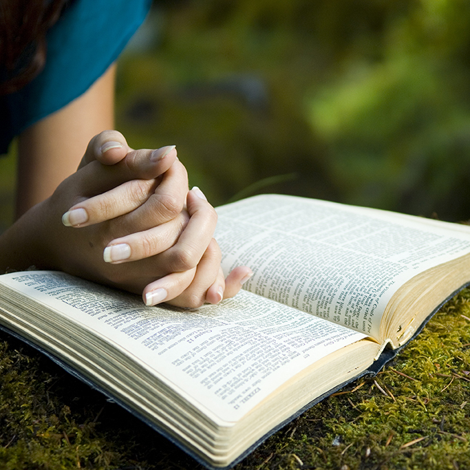 How to Study the Bible Like Billy Graham (7 Powerful ...