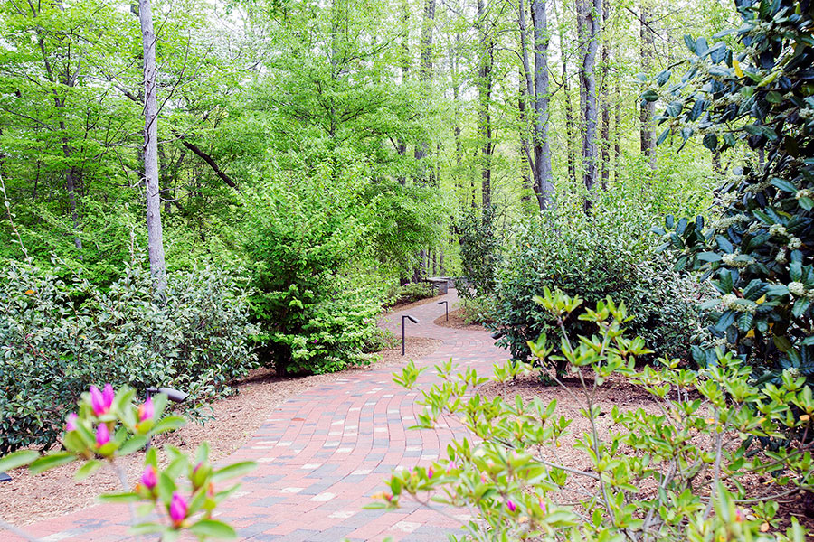 scenery in library prayer garden