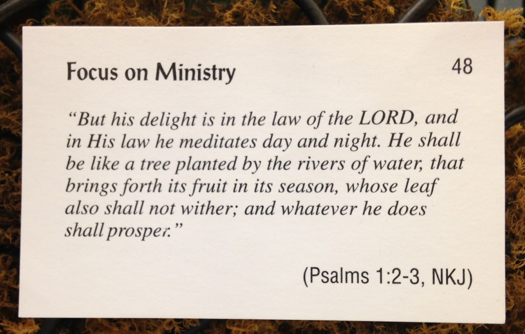 Scripture for Dec 2 2013