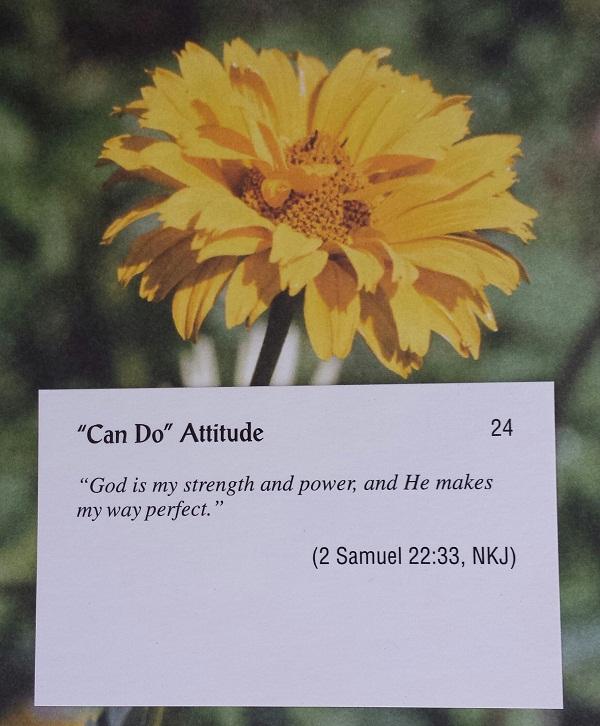 scripture24 small