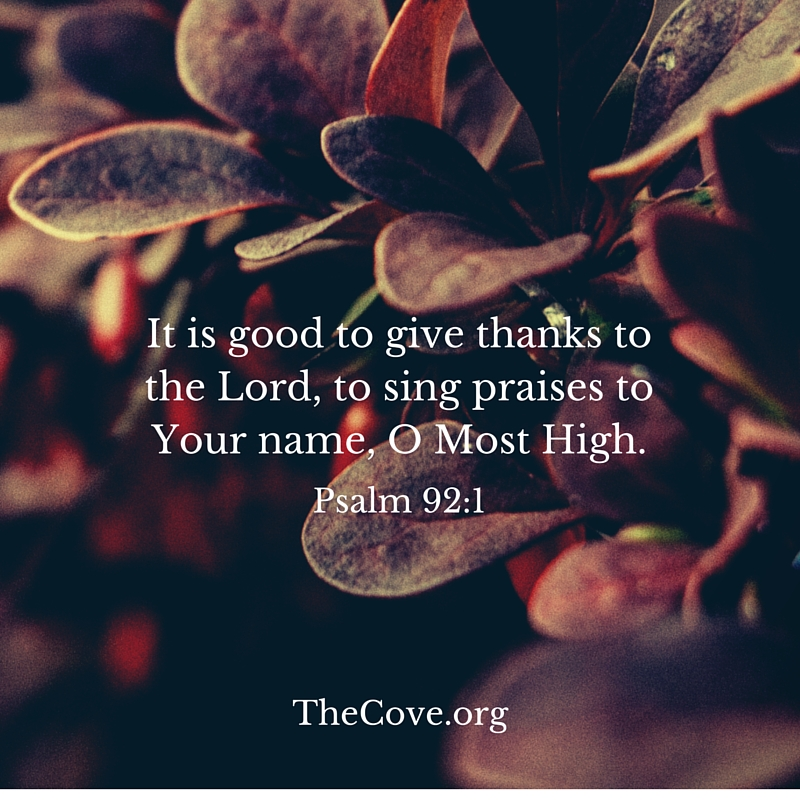 Cove Bible Verse for week of November 9 - Notes from the Cove