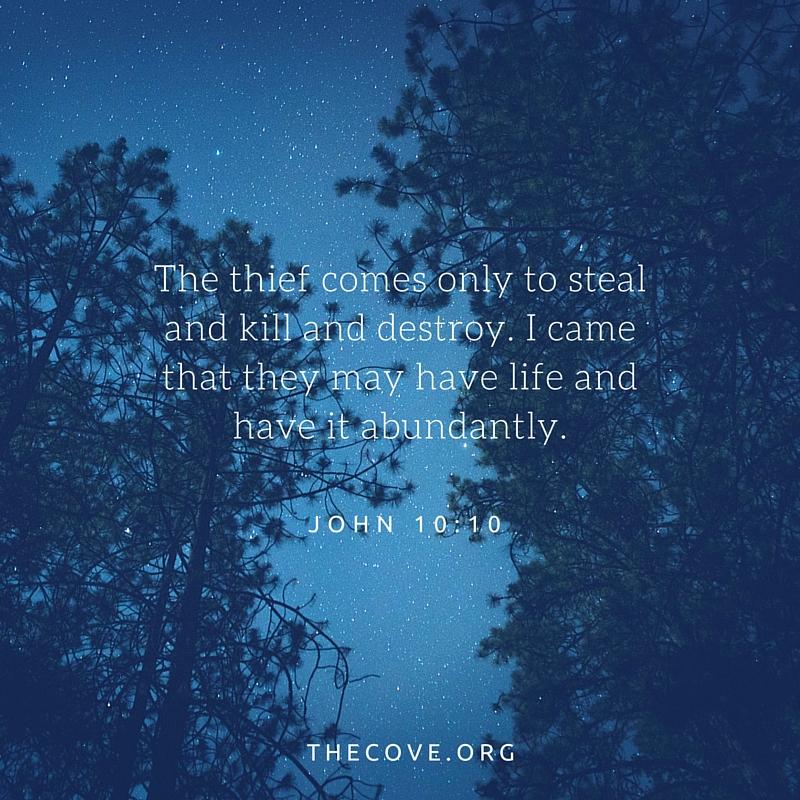 John 10 10 ESV
