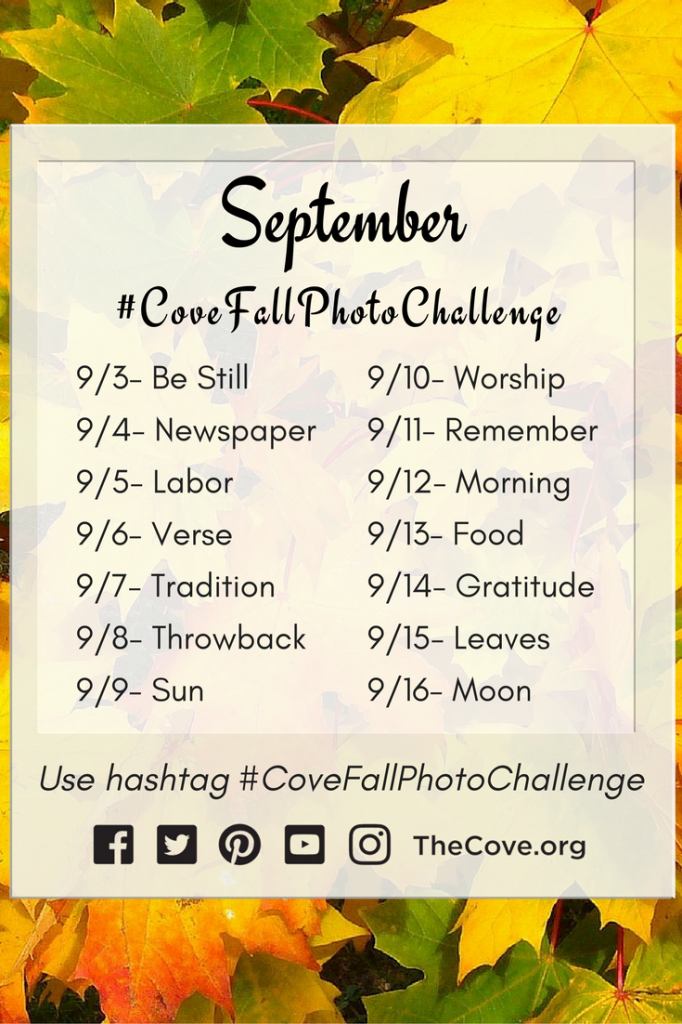 Fall_Photo_Challenge_Pinterest_2016