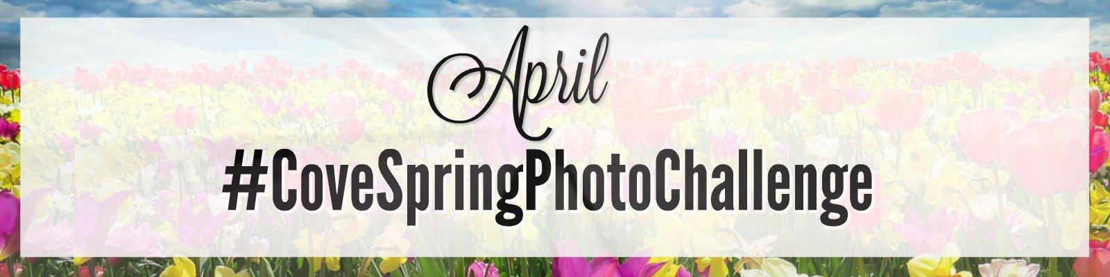 Spring Photo Challenge Blog Header