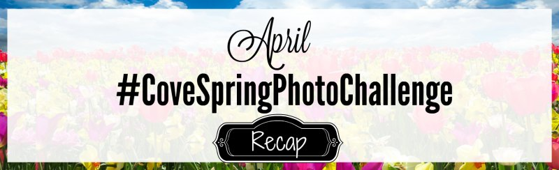 Spring Photo Challenge recap header