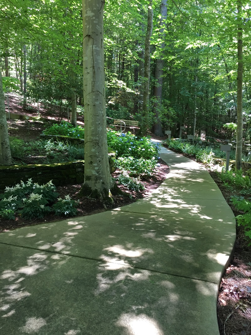 Ruths Prayer Garden June 2017 pathway sm