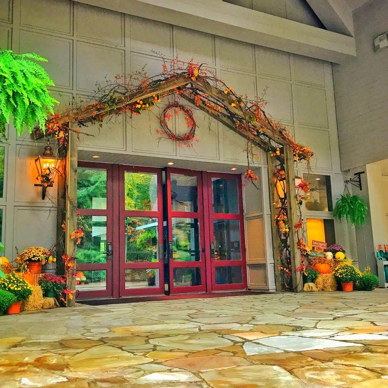 Autumnal (TC Entrance)