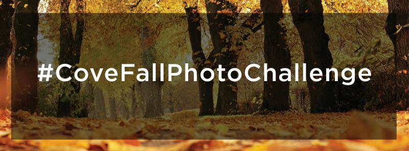 Fall Photo Challenge Banner 2