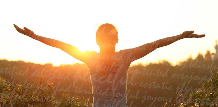 person raising their hands at the sun