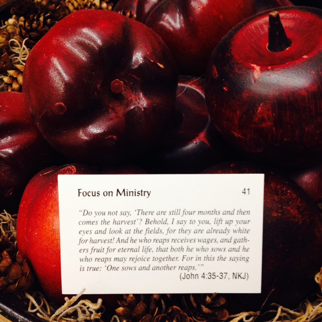 Focus on Ministry Card 41
