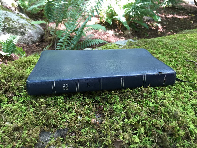 Bible resting in the moss in Ruths Prayer Garden July 2016