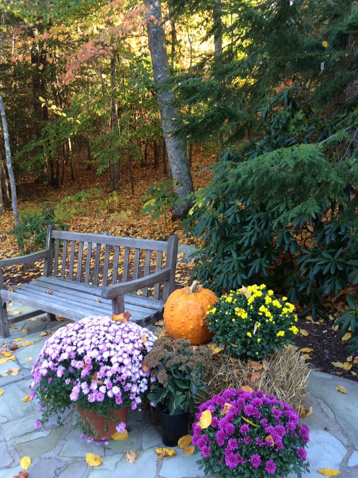 a bench with fall flowers